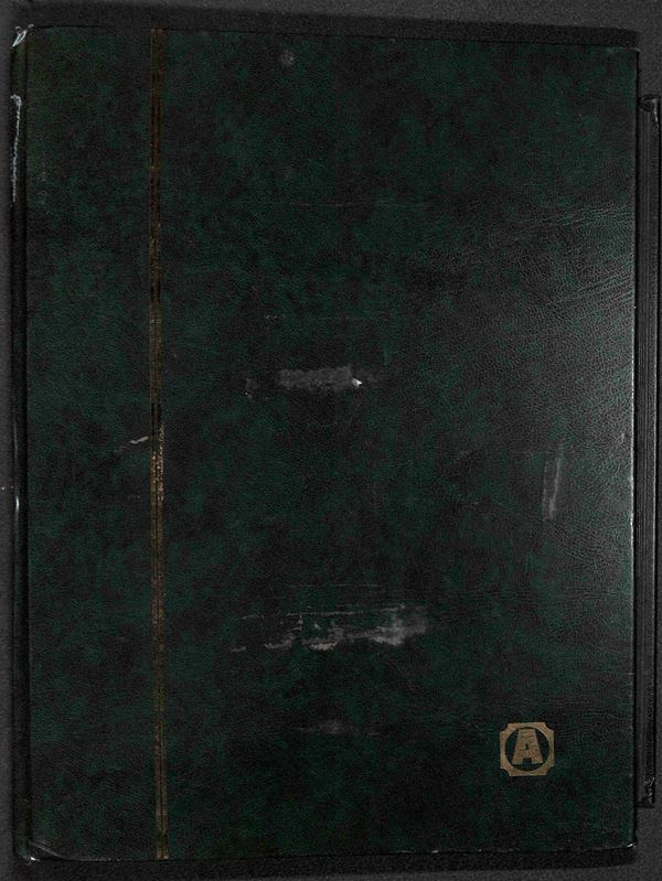 MATERIALE FILATELICO - Album raccoglitore Abafil 30 pagine 9 listelli - buone condizioni